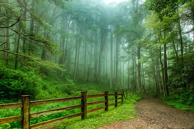 Blue Ridge Parkway - Foggy Country Road And Trees II Print by Dan Carmichael