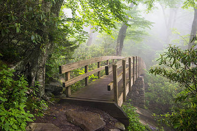 Western North Carolina Photograph - Blue Ridge Parkway Hiking Tanawha Trail Rough Ridge by Dave Allen