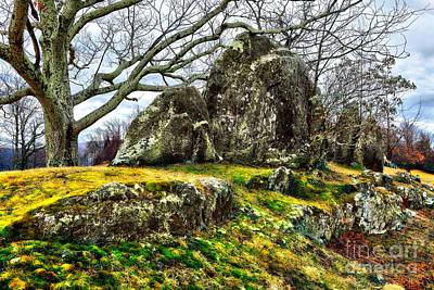Blue Ridge Parkway Rocky Knob Moss Rocks Print by Dan Carmichael