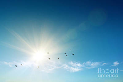 Resurrection Photograph - Blue Sky by Carlos Caetano