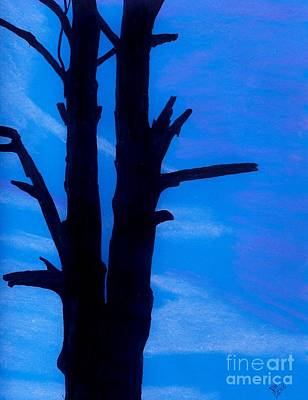 Sunset Drawing - Blue Sky Tree by D Hackett
