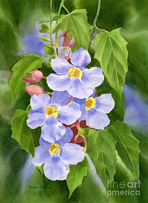 Blue Sky Vine With Background Original by Sharon Freeman