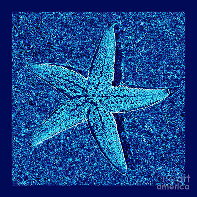 Blue Starfish - Digital Art Print by Carol Groenen