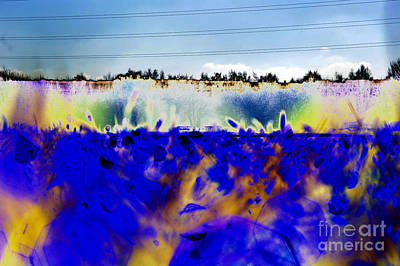 Abstract Forms Digital Art - Blue Things by Carol Lynch
