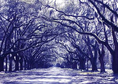Blue World In Savannah Print by Carol Groenen