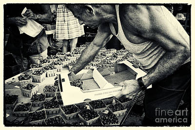 Filmnoir Photograph - Blueberries At The Market New York City by Sabine Jacobs
