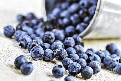 Blueberries Print by Elena Elisseeva