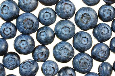 Blueberry Photograph - Blueberries by Jim Hughes