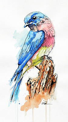 Indian Ink Painting - Bluebird by Paul Miners