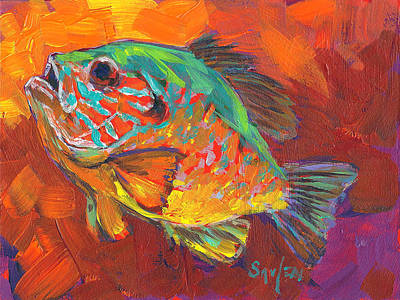 Bluegill Study Print by Savlen Art