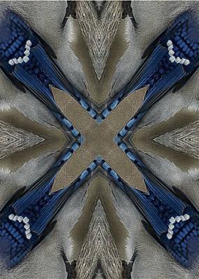 Bluejay Digital Art - Bluejay Feathers by TnBackroadsPhotos