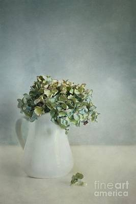 Dried Photograph - Blues by Priska Wettstein