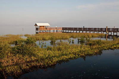 Nature Center Photograph - Boardwalk At South Padre Island Birding by Larry Ditto