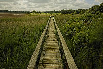 Boardwalk Into Nature Print by Jonathan Davison
