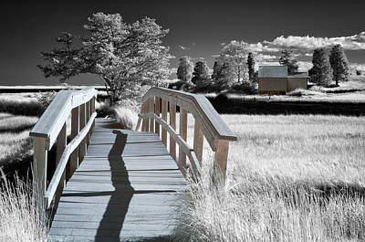 Boardwalk Over Nauset Marsh Print by Michael Blanchette