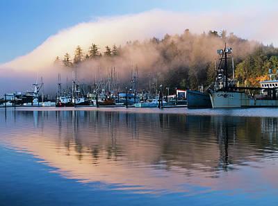 Boats Dock At Winchester Bay  Oregon Print by Robert L. Potts