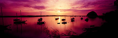 Boats In The Sea, Morro Bay, San Luis Print by Panoramic Images