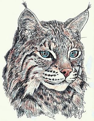 Bobcat Portrait Print by VLee Watson