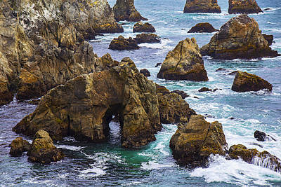 Ripped Photograph - Bodega Head by Garry Gay