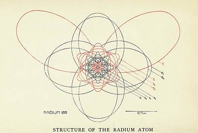 Atom Photograph - Bohr-sommerfeld Model Of The Atom by Emilio Segre Visual Archives/american Institute Of Physics