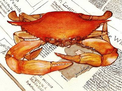 Boiled Crab Print by June Holwell
