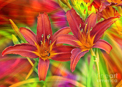 Lilies Photograph - Bold And Beautiful Daylilies by Carol Groenen