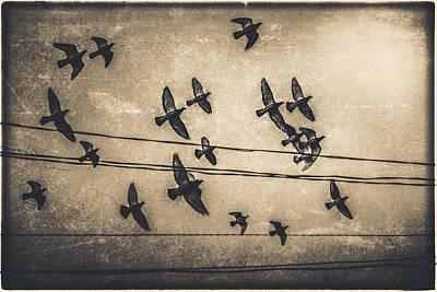 Bombers Original by Mihai Ilie