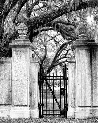 Bonaventure Cemetery Bw Savannah Ga Print by William Dey