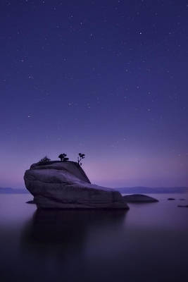 Starry Photograph - Bonsai Island by Sean Foster