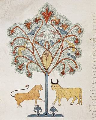 Book Of Daniel. 10th C. Dreaming Print by Everett