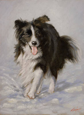 Charcoal Landscape Drawings Painting - Border Collie Portrait I by John Silver