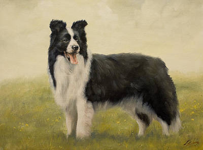 Charcoal Landscape Drawings Painting - Border Collie Portrait Vi by John Silver
