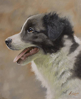 Charcoal Landscape Drawings Painting - Border Collie Pup Portrait IIi by John Silver