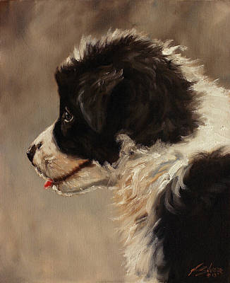 Dry Lake Painting - Border Collie Pup Portrait by John Silver