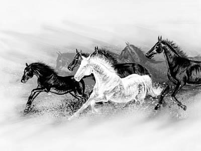 Teshia Painting - Black And White Contemporary Wild Horses by Teshia Art