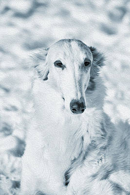 Borzoi Russian Hound Portrait Print by Christian Lagereek