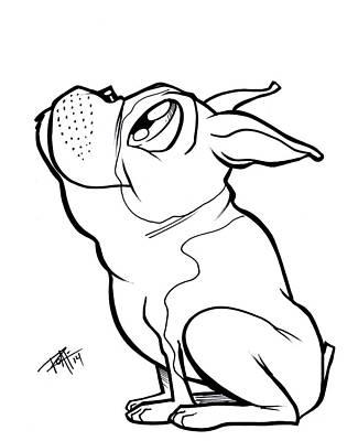 Drawing - Boston Terrier  by Big Mike Roate