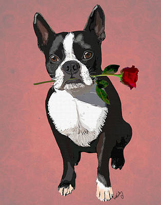 Boston Terrier With A Rose In Mouth Print by Kelly McLaughlan