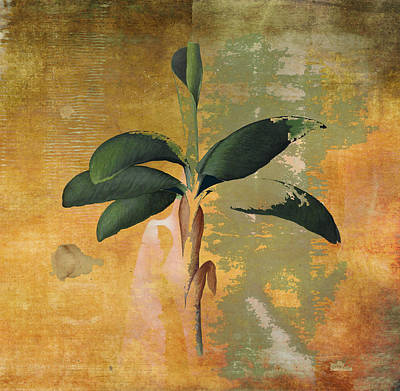 Leaves Painting - Botanical Banana Tree by Kandy Hurley
