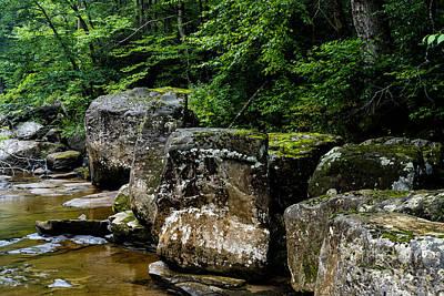 Boulders Along Williams River  Print by Thomas R Fletcher