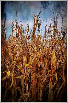 Southern Indiana Photograph - Bountiful Harvest by Julie Dant