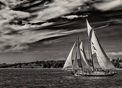 Windjammer Photograph - Bowditch No. 1 by Fred LeBlanc