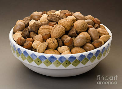 Bowl Of Mixed Nuts Print by Danny Smythe