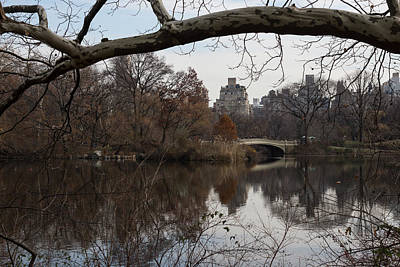 Bows And Arches - New York City Central Park Print by Georgia Mizuleva