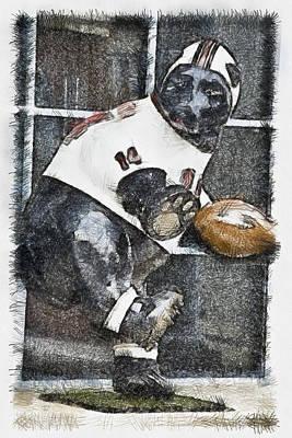 Mascots Mixed Media - Boyertown Bear by Trish Tritz