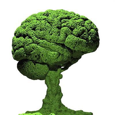 Brain As Bonsai Tree Print by Russell Kightley