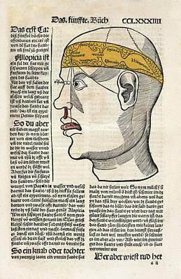 Alchemical Photograph - Brain Functions And Senses by National Library Of Medicine