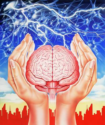 Brain Protection Print by John Bavosi