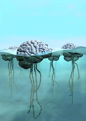 Subconscious Photograph - Brains As Jellyfish by Russell Kightley