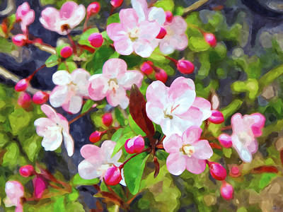Sakura Painting - Branch With Pink Blossoms by Lanjee Chee